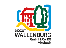 Wallenburg Logo